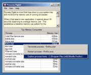Process Piglet 1.01.14