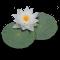 LilyPond 2.12.3