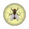WebLight 5.0.22