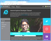 Internet Explorer Developer Channel 14.6.13.2228