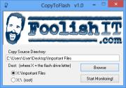 CopyToFlash 1.0