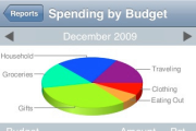 Ace Budget