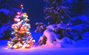 Snowy Night theme for Windows 7+