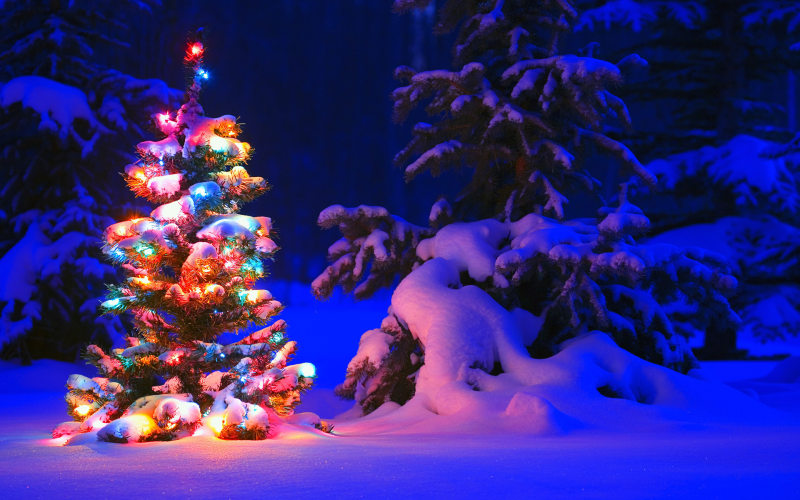 snowy night theme for windows 7 free download software reviews
