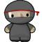 System Ninja Portable
